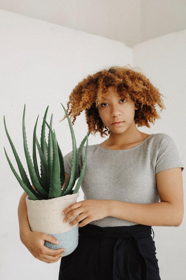 Une femme tenant une plante d'aloe vera